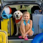 Eze family car rental